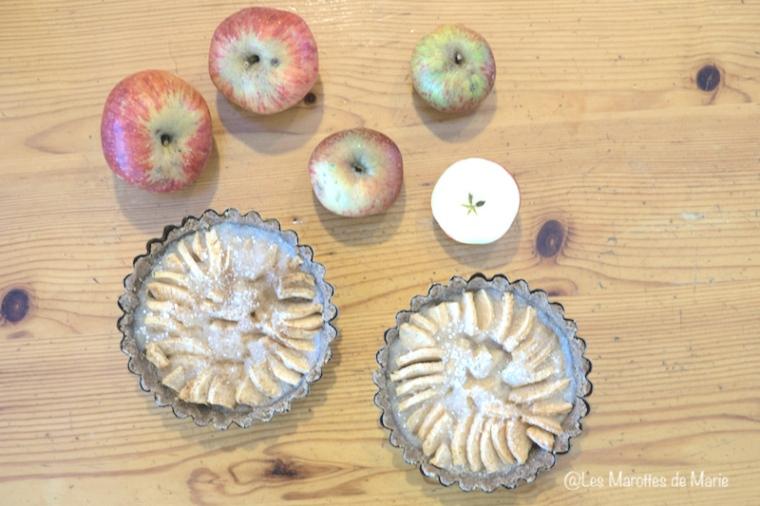 2015-10-19 tarte aux pommes-8