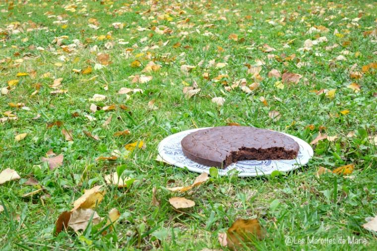 2015-10-20 brownie au chooclat-2
