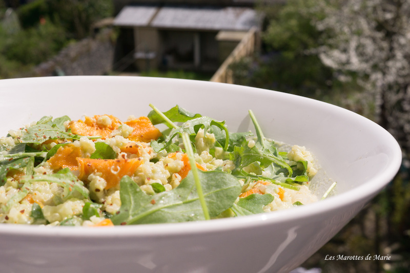 2016 04 17 Salade vegan quinoa patate douce Les Marottes de Marie 1