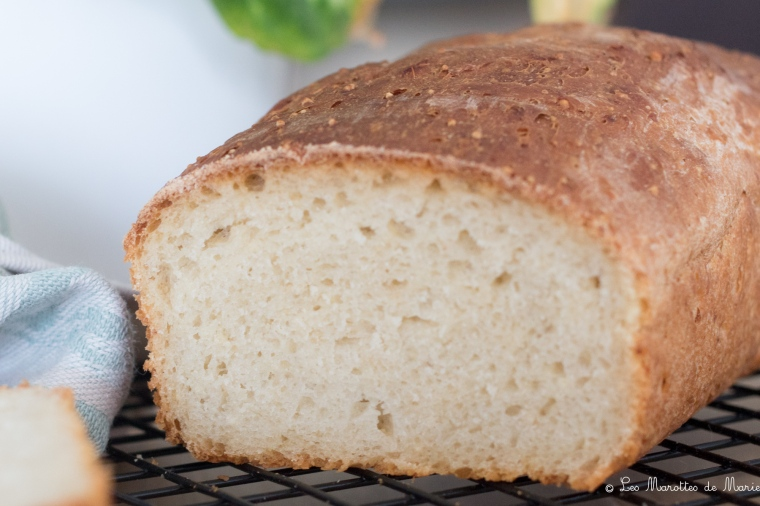 2020 05 8 pain de mie vegan Les marottes de marie-1